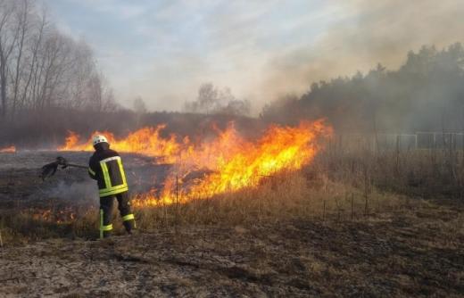 25 загорань сухотрав'я ліквідували за минулу добу вогнеборці Закарпаття
