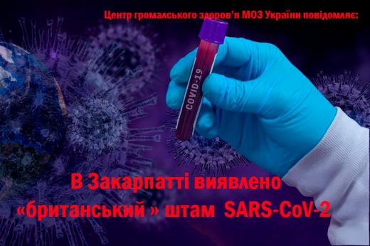У 2 зразках із Закарпатської області виявлено «британський» штаму SARS-CoV-2