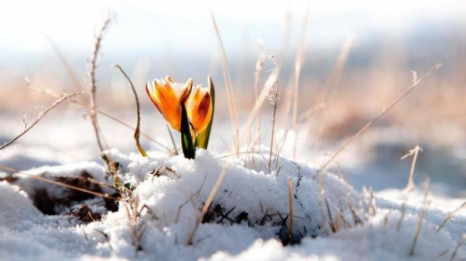 Гороскоп на 18 березня для всіх знаків зодіаку: день спокою і прийняття