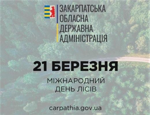 Закарпаття на першому місці за  запасами деревини в Україні