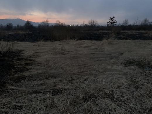 Пожежа в Долині нарцисів: всі подробиці