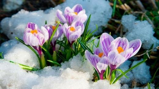 Гороскоп на 22 березня для всіх знаків зодіаку: день, коли потрібно працювати, не шкодуючи сил