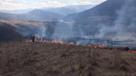 Двох жителів Закарпатті оштафували за спалювання трави