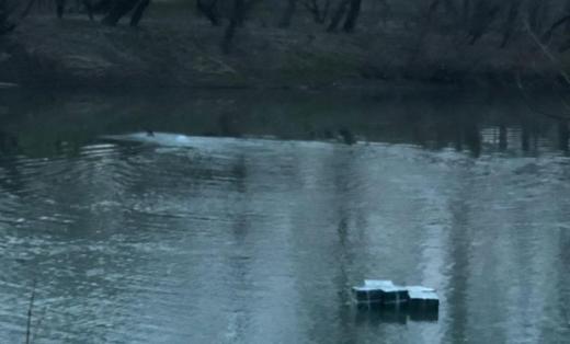 Прикордонники знайшли у річці 5 тисяч пачок цигарок