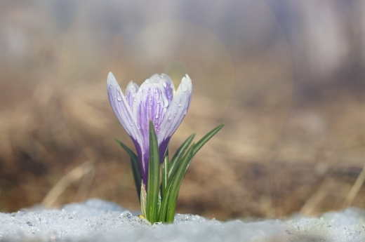 Україну накриють дощі і похолодає: прогноз погоди на 29 березня