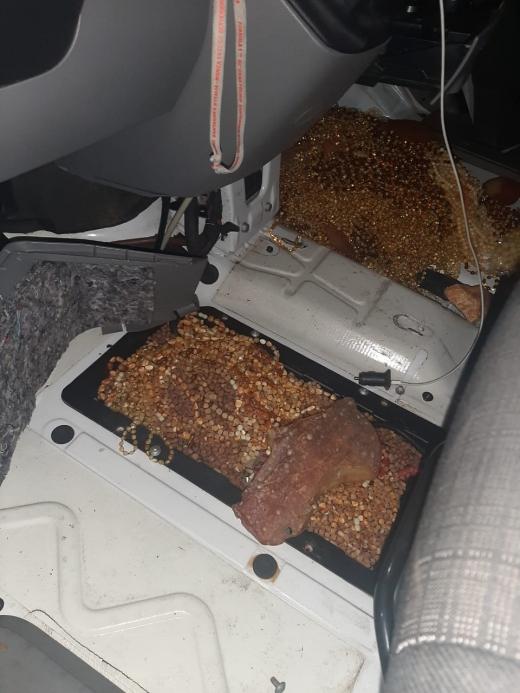 На кордоні з Румунією виявили 15 кг бурштину