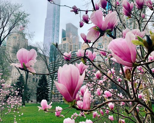 Останній день квітня нарешті принесе тепло до +20°