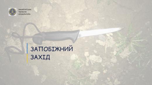 Жителя Ужгорода, який наніс співмешканці удар ножем через ревнощі, взято під варту