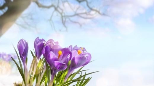 Погода 5 квітня: на Заході світитиме сонце, а Схід накриють дощі