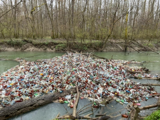 На річці Боржава виявили 10 сміттєвих заторів