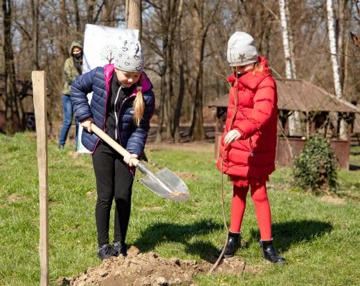В Ужгороді висадили 500 дерев в рамках Всеукраїнської акції з озеленення «Greening of the Planet»