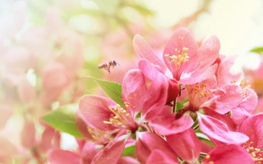 Гороскоп на 26 квітня для всіх знаків зодіаку: день, коли не можна допускати злих помислів