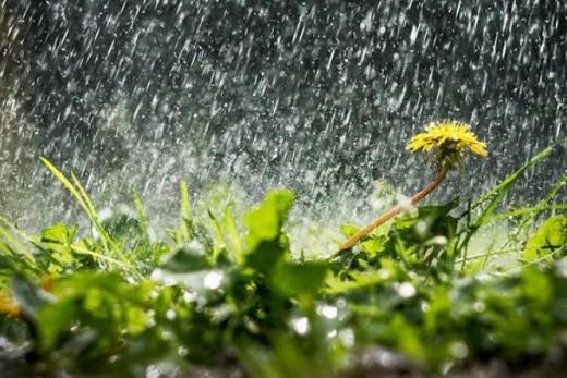 Спека тікає з України – прогноз