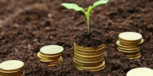 Плата за землю: на Закарпатті платники сплатили до бюджету понад 230,5 млн гривень