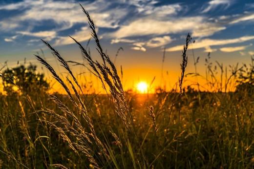 Україну накриють грози, зливи та спека: погода на 3 серпня
