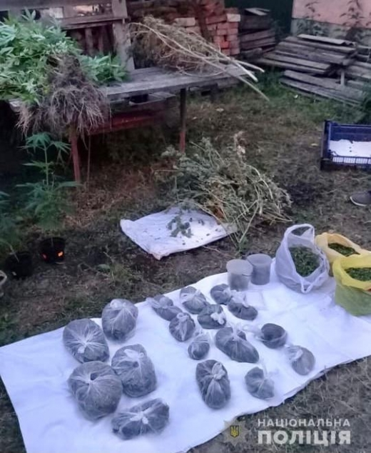 Під час обшуку в Хусті поліцейські вилучили 2 кілограми марихуани