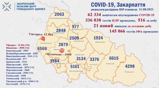 За добу на Закарпатті виявили 21 новий випадок COVID-19
