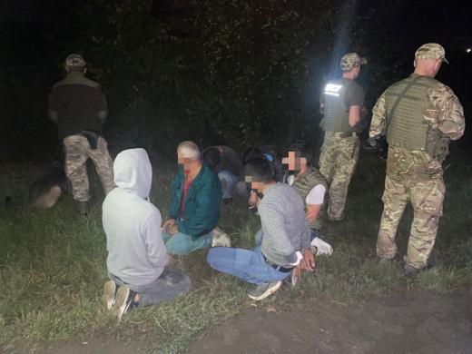 Повітряна розвідка виявила 6 громадян Туреччини, які ховалися від прикордонників у соняхах