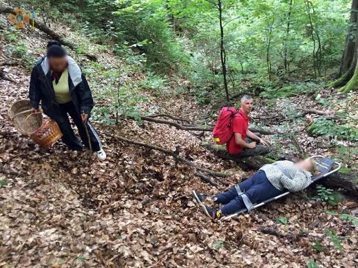 На Ужгородщині жінка травмувалася в лісовому масиві