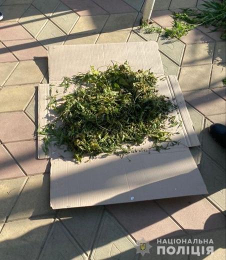 Пів кілограма марихуани виявили у помешканні ужгородця